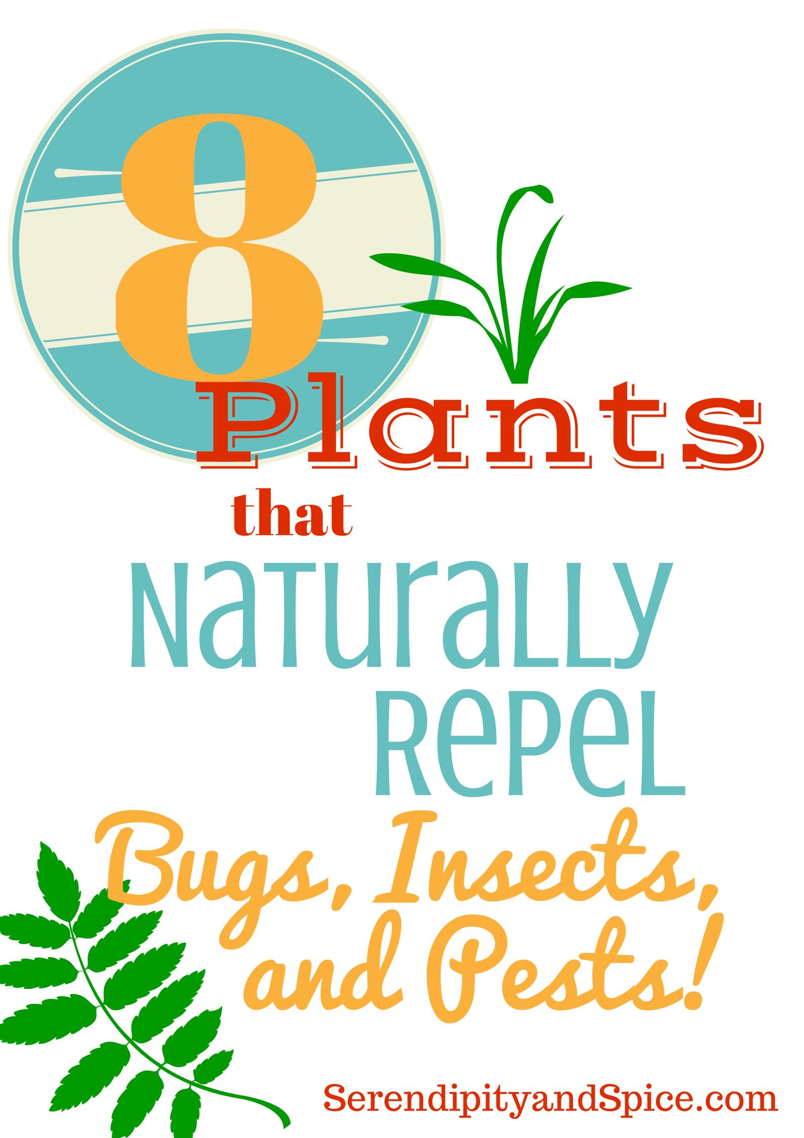 Plants that Repel Pests
