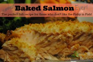 Best Baked Salmon Recipe Around!