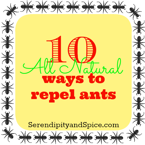 Naturally Repel Ants