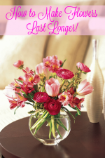 How to Make Flowers Last Longer in a Vase!