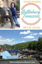 Visiting Gatlinburg TN with Kids