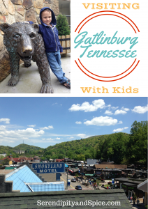 Visiting Gatlinburg TN with Kids