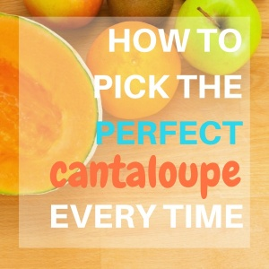 How to Pick a Cantaloupe