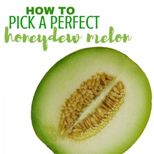 How to Pick a Honeydew