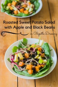 Roasted Sweet Potato Salad with Apple and Black Beans in Chipotle Dressing