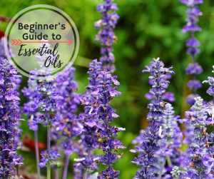 The Ultimate Beginner's Guide to Essential Oils - Understand how to use them, why you should use essential oils, and how to be safe with essential oils.
