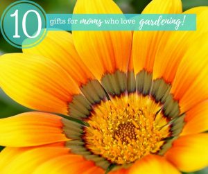 Top 10 Gifts for Moms Who Love Gardening