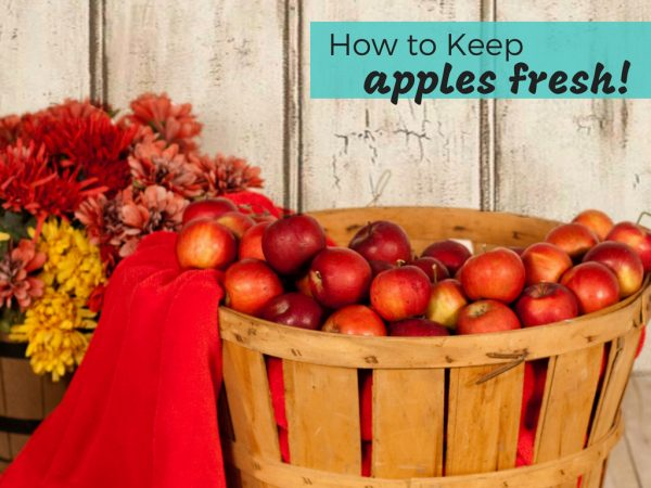 How to Store Apples to Stay Fresh Longer