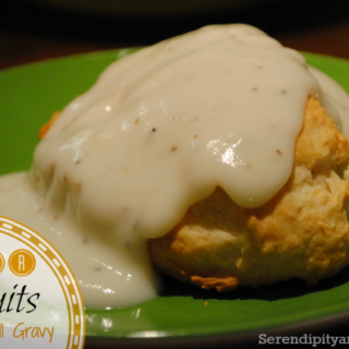 Southern Beer Biscuit Recipe